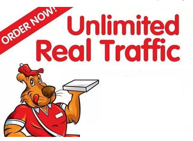 drive Keyword targeted UNLIMITED Google search traffi...