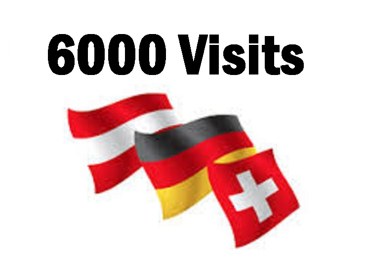 drive 6000 real visits German speaking countries Live Analytic