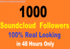 Non Drop 1000+ Music Profile Followers or Likes