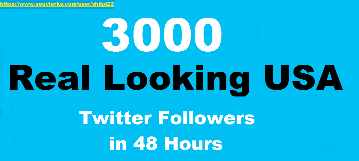 Give you 3000+ HQ USA Twitter Folowers only
