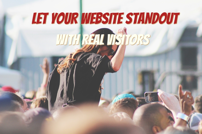 UNLIMITED DAILY HUMAN TARGETED Website TRAFFIC for 90 DAYS OR 3 MONTHS