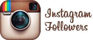 will Get 500 Intagram Followers or likes only