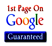 GUARANTEED GOOGLE 1st PAGE RANKING ONLY WITH BLASTER ...