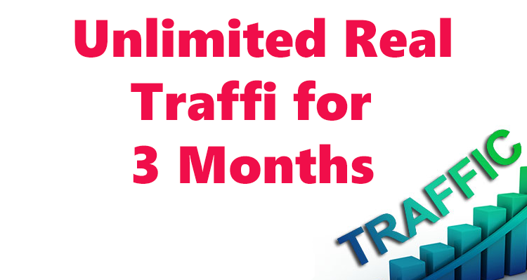 300+ daily human traffic for 3 months