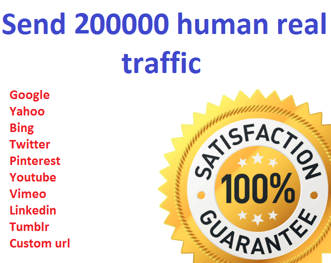 Send 200000+ Human Traffic by Google Bing yahoo etc