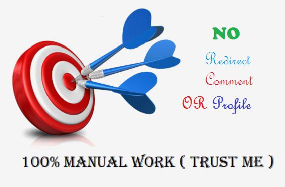I will manually build 30 high quality edu and gov seo backlinks