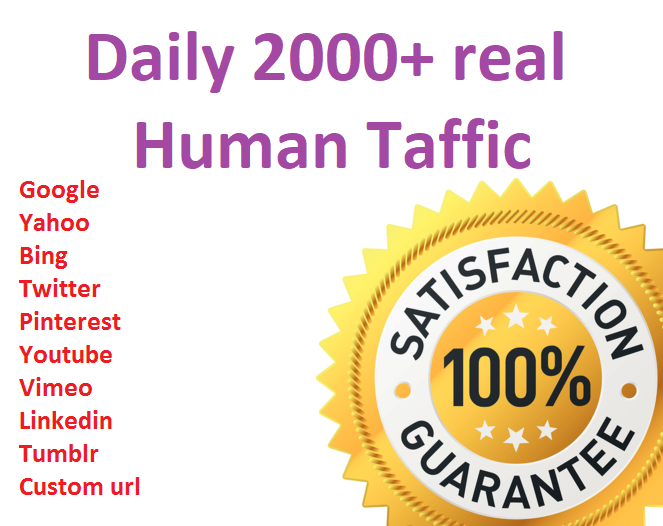 I will drive daily 2000+ real human traffic from Google, yahoo etc for 10 days