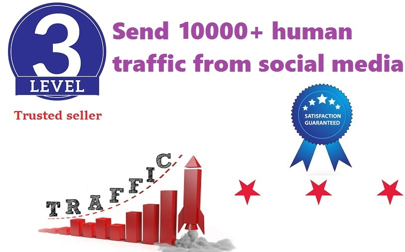 send 10000+ human traffic from google,yahoo, etc