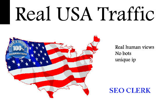 25000+ SEO USA social network traffic on your web site