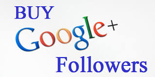 Get High-quality 110+ Google Plus Followers within 4-6 hours