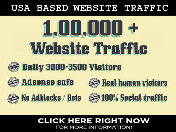 I will drive US based traffic to your website for 30 days