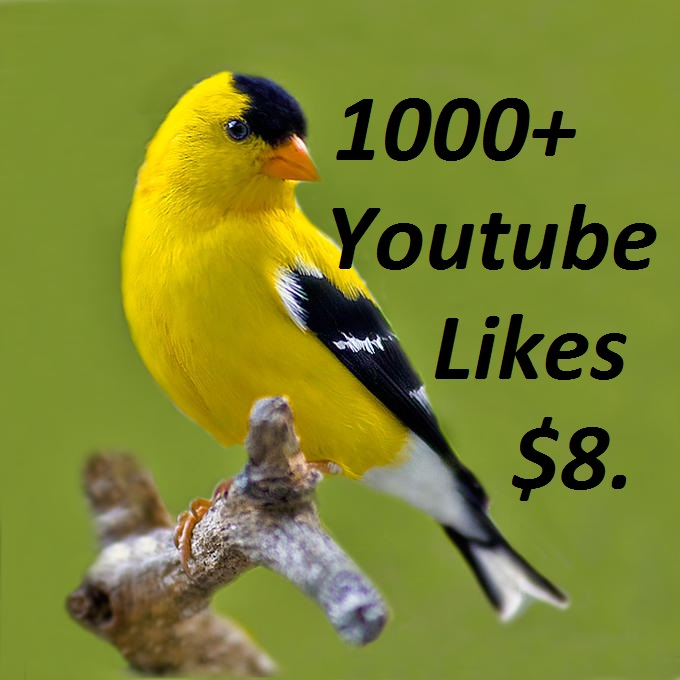 1000+ YouTube Lik-es split available very fast 24-48 hours guaranteed