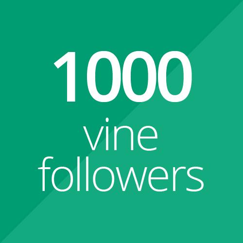 1000 High Quality Vine followers