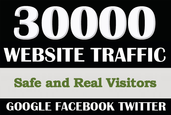 I will drive 30000 Worldwide Real Visitors Traffic to Website