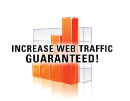 send 20,000 Guaranteed Human Visitors to your Website
