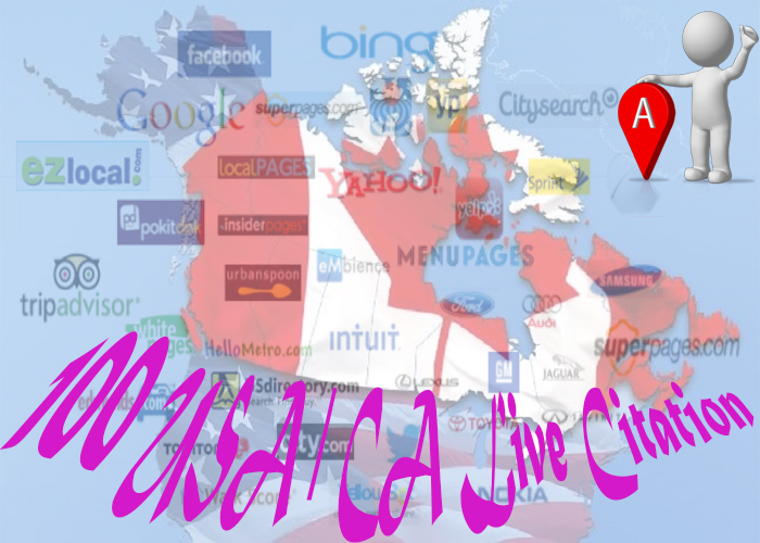 100 USA OR 100 Canada  live local Citations for your local Business Listing