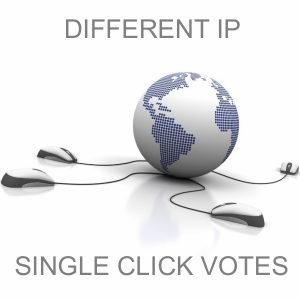 Manage For You 100 Different and Unique IP Votes For Your Online Voting Contest Entry