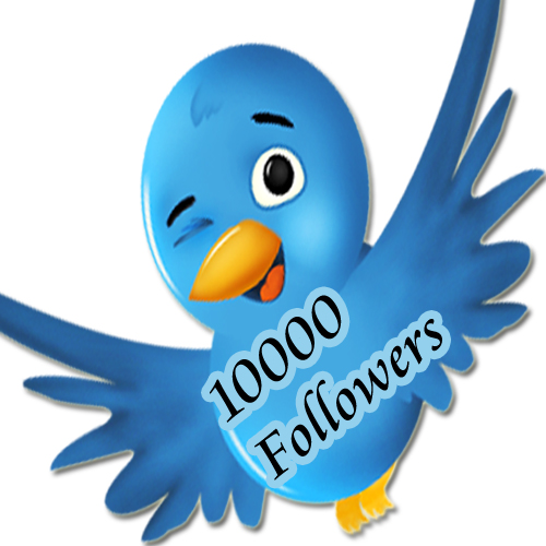 add 10,000+ real looking twitter followers to your account in less than 24 hours