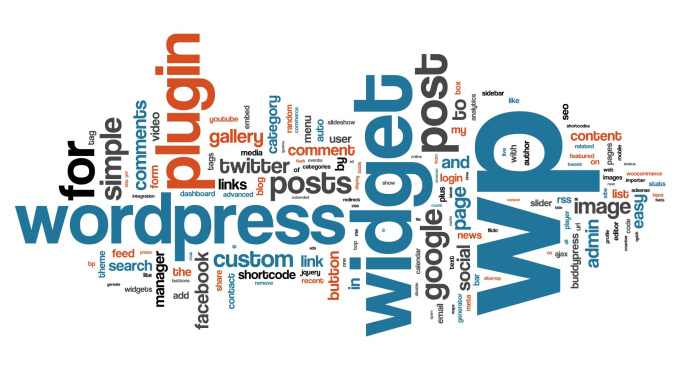 will make a professional looking wordpress blog for y...