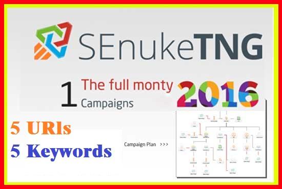 Create Senuke TNG the Full Monty to create massive backlink diversity