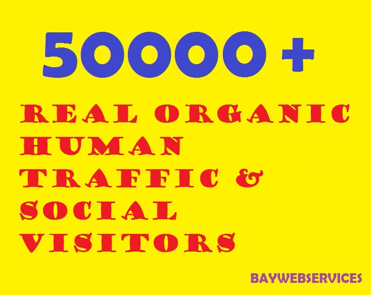 50000 Real Human Traffic amp Social Visitors 10 days