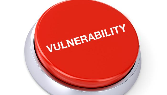 Website Vulnerability Scan