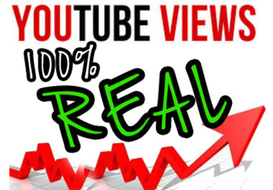 Add 1000 targeted YouTube views from USA