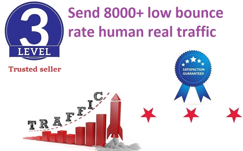 send 8000+ low bounce rate human traffic from google,  yahoo etc