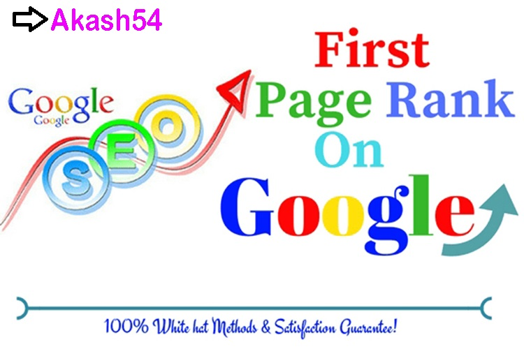 Top google 1st page ranking Guarantee Organic SEO your website