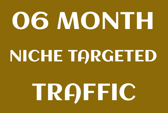 Niche Targeted 06 Month Website Visitors Traffic