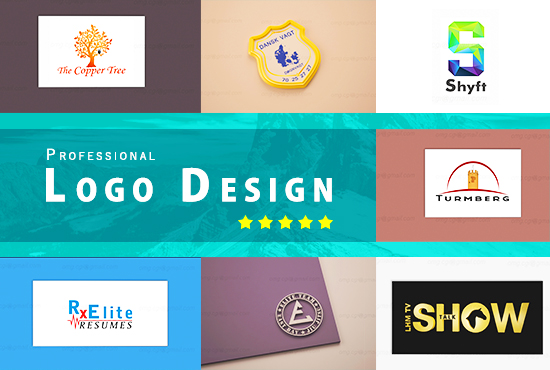 Design Professional 2D and 3D LOGO