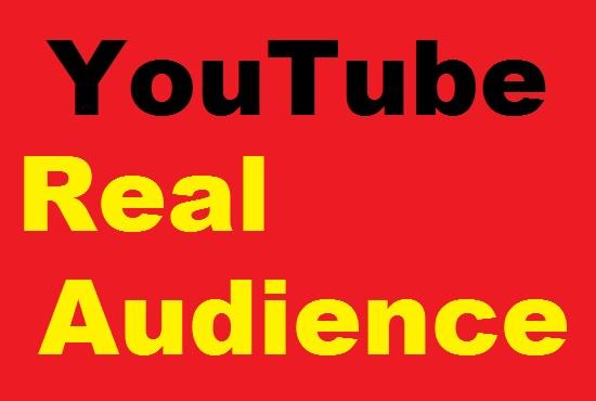 Guaranteed 2000 YouTube VlEWS non drop & drip feed