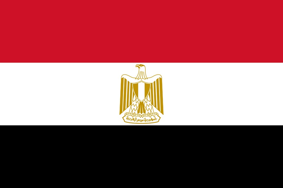 Guide You With any Information Need to know about Egy...