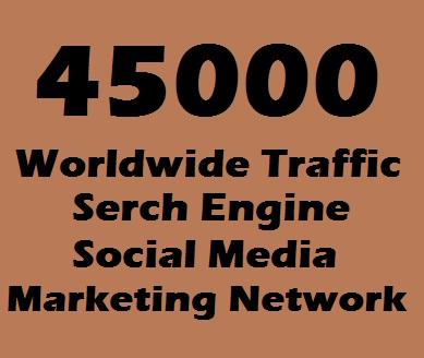45000 Web Traffic Worldwide for 7 days