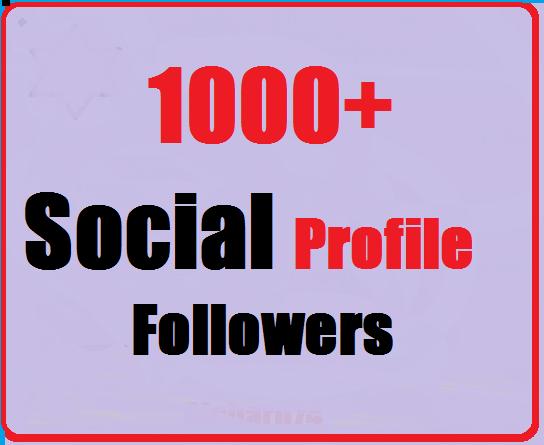1000-Social-Profile-Followers-Instant-Start
