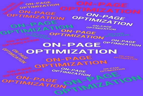 High-quality On-Page SEO Service including all features