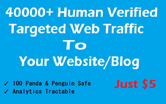Drive 50000+ Targeted Human Verified Unique Website Traffic