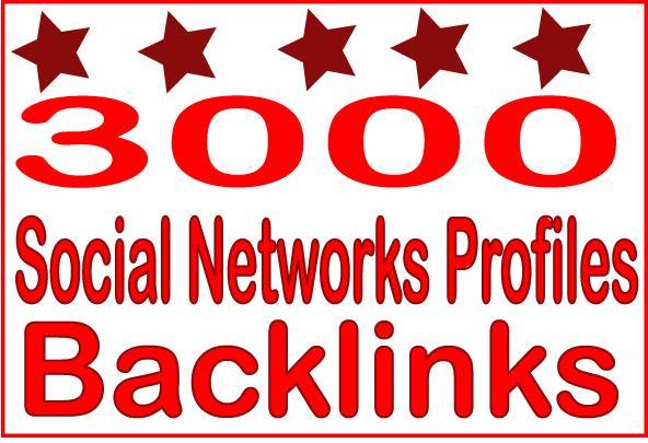 Create Over 3000 HQ PR Panda Safe Social Networks Profiles Backlinks