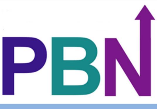 Custom offer for 9 packages 100 high quality PBN back...
