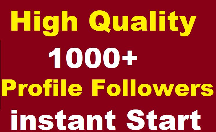 1000+ Social Media Profile Followers High Quality instant Start