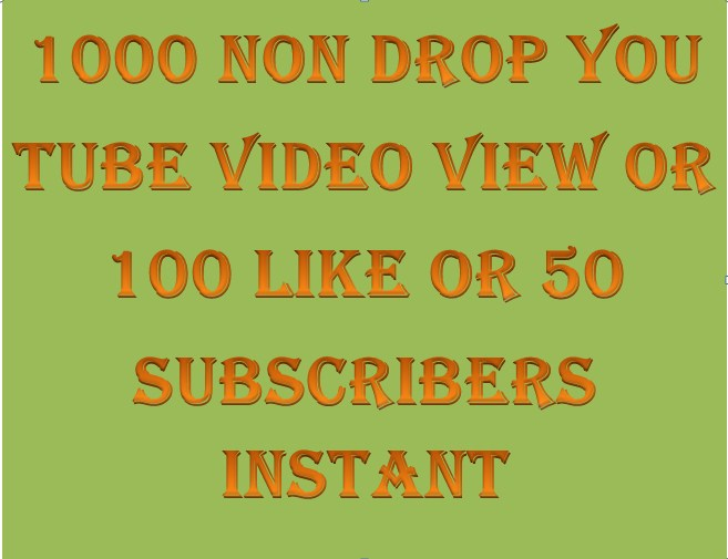 500+  High Retention Non Drop Video View