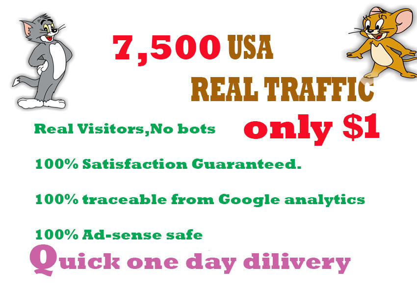 Drive 7,500 real human web traffic in 24 hours