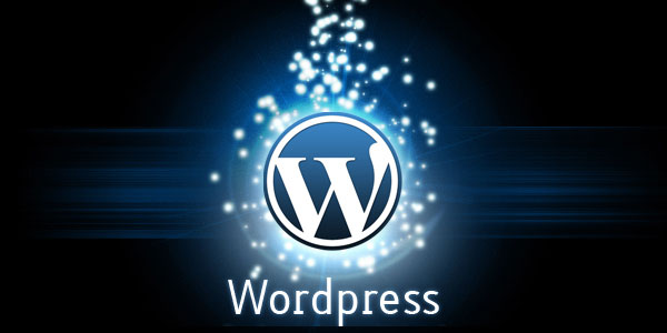 I can Customize Wordpress and Fix Wordpress Bugs for you