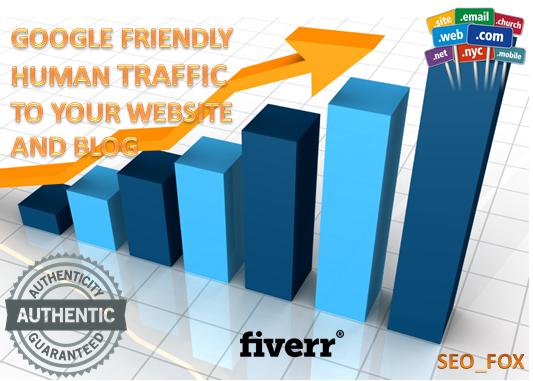 USA Targeted Website,Blog Traffic