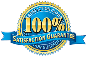 Instant 4000+ post promotion service