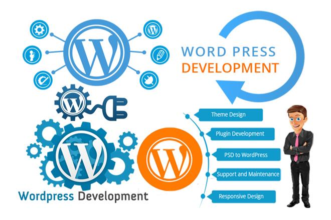 I will create a professional premium wordpress websit...