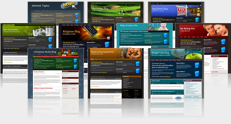 Build Professional looking wordpress website and blog...
