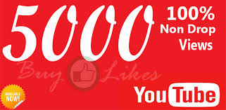 will  Provide Fast 5000+ Youtube Views with  200 Likes to your video within 2-3 hours