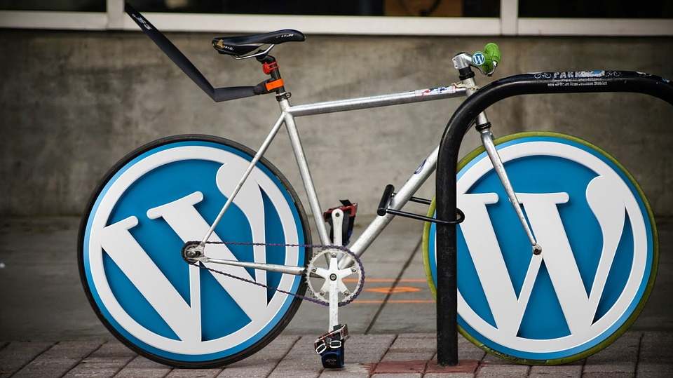 Wordpress website design service include theme custumization