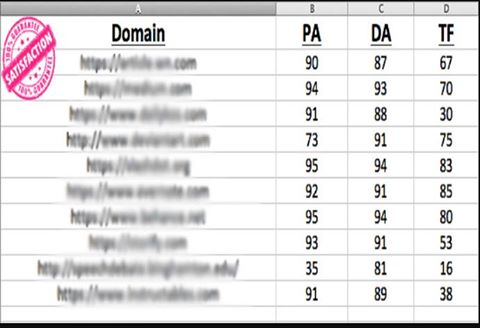 Rank To Google 1 Page With HIgh PA. DA, CF, TF 15 PBNS Backlink and 50 EDU/GOV Backlinks